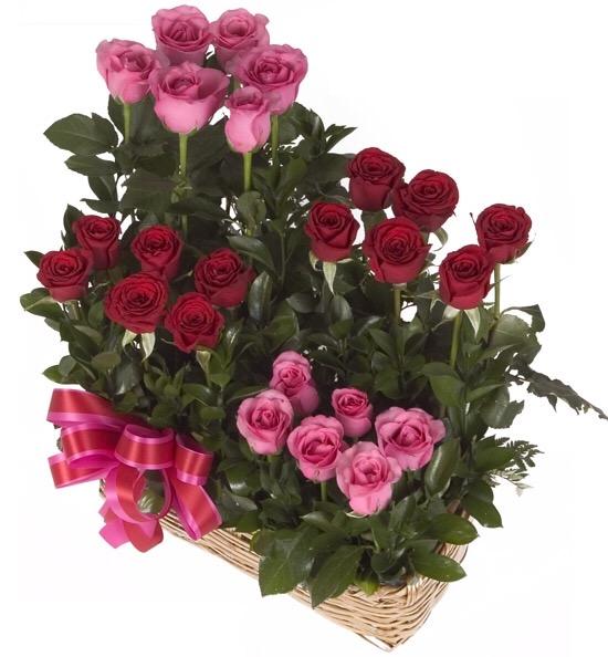 Arreglos Florales Archivos Floreria Patsy Entregas De